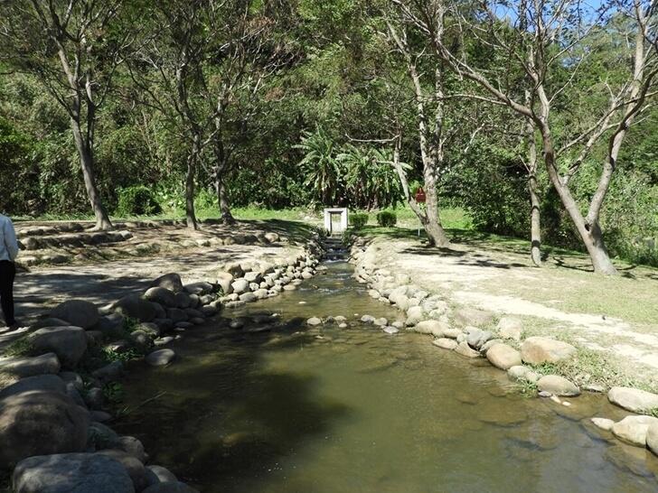 生態公園的小溪流