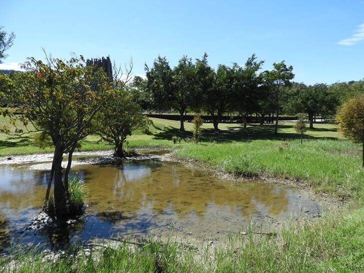 隨處一個小水塘都很美