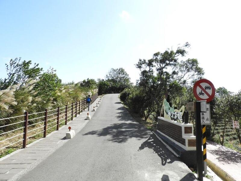 往觀光茶園的岔路