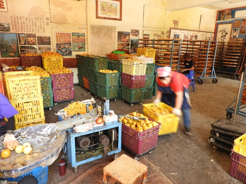 在味衛佳可以看到工作人員處理柿子
