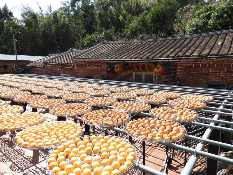 金漢杮餅的曬柿子場旁邊也是老屋