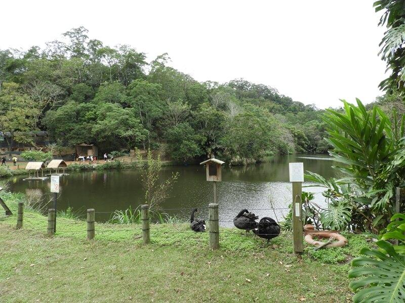 新竹綠世界生態農場鴛鴦湖