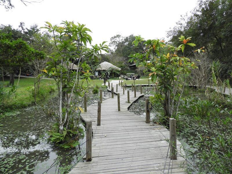 水生植物園區